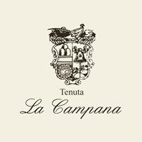 Tenuta La Campana - Asciano