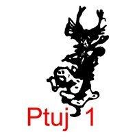Društvo kurenti Ptuj1
