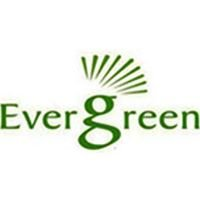 Evergreen Solar