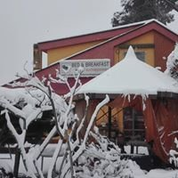 L'Acchiappasogni Bed and Breakfast - San Cesareo (RM)