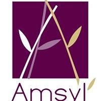 Amsyl, spa, massage, sauna