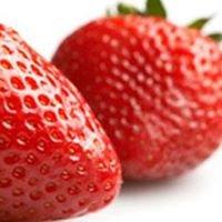 Verse aardbeien - familie Hebbrecht