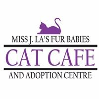 Miss J.La's Fur Babies Cat Cafe and Adoption Centre