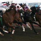 Alberta Quarter Horse Racing Association
