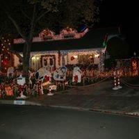 Thoroughbred Christmas Lights