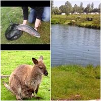Annaginny Fishery & Park Farm