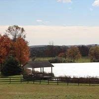 Lakeview Farm