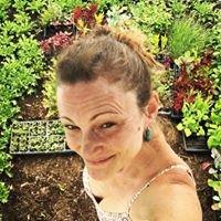 Baby Mama Botanicals