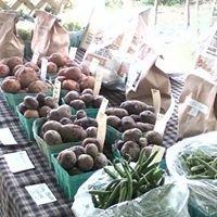 The Little Green Market