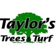 Taylor's Trees & Turf