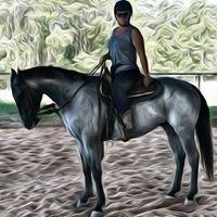 Korora Riding Stables
