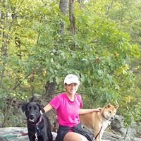 Donna's Dog Walking and Pet Sitting