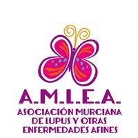 Lupus Murcia - AMLEA
