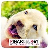 Hotel Canino y Felino Pinar del Rey