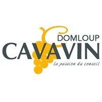 Cavavin Domloup