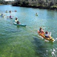 Go Sea Kayak Brunswick River