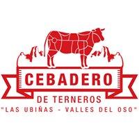 Cebadero Parque Ubiñas - Valles Del Oso S.L