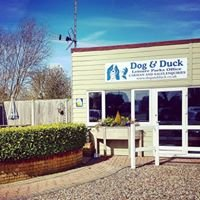 Dog and Duck Leisure Parks