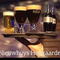 't Nieuwhuys