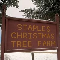 Staples Christmas Tree Farm