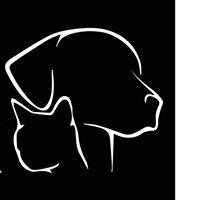 Chenil/chatterie de Bex - elevage du Rocher de l Aigle