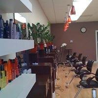 2 The Salon