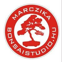 MarczikaBonsaiStudio