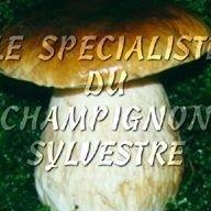 Depot de Champignons/Myrtilles Val et chatillon