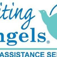 Visiting Angels Tampa Bay