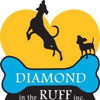 Diamond in the Ruff Inc. Canada