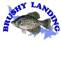 Brushy Landing