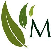 M Moscatelli Ambiental, Topografia e Ecoturismo