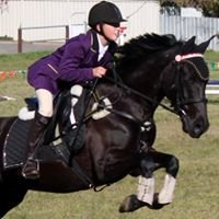 Free Rein Equestrian