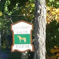 Lantern Lane Farm