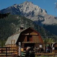 Warner Stables Sleigh Rides, Banff AB