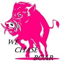 We chase boar
