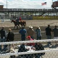 Tri-Cities Horse Racing