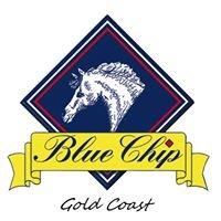 Blue Chip Gold Coast Supplier