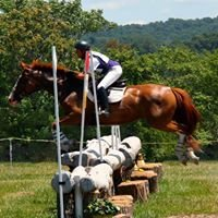 Ann-Louise Horse Training LLC