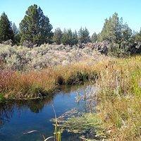 Crooked River National Grassland