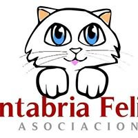 Cantabria Felina