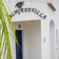 Palm Tree Villa in Cyprus