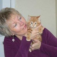 Cedar Cove Wellness: Reiki for People & Pets