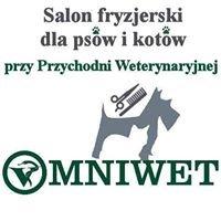 Salon fryzjerski dla psów i kotów przy Przychodni Weterynaryjnej Omniwet