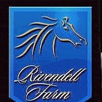 Rivendell Connemaras & Irish Sport Horses
