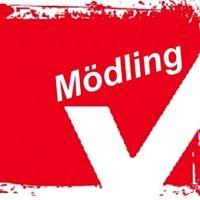 Gewerkschaft vida Bezirk Mödling