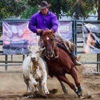 Rick Hoffman Performance Horses
