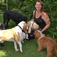 Paw Prints Dog walking services - Please meet my four legged friends.