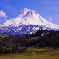 City Of Weed California