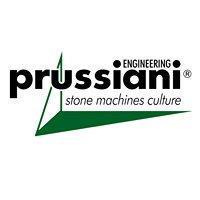 Prussiani Engineering